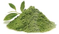 green-tea-antioxidant-supplement